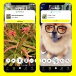 Snapchat Plant Identifier and Pooches Right in Snapchat
