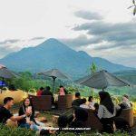 Informasi Lengkap Mengenai Cafe Trawas Viral Cafe Sabin Trawas