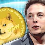 Benarkah Elon Musk Tidak Memiliki Shiba Inu Coin? Ini Penjelasannya
